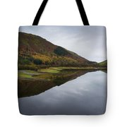 Thirlmere From A Low Altitude Tote Bag