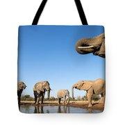 Thirsty Elephants Tote Bag