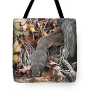 Thirsty Squirrel Tote Bag