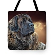 This Is Grizz Tote Bag