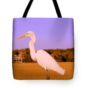 This Is My Good Side Tote Bag