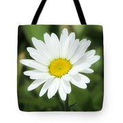 This Is Spring Tote Bag