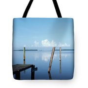 This Is The Morning View Of Pine Island Tote Bag