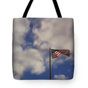 This Land Was Made For You And Me Tote Bag