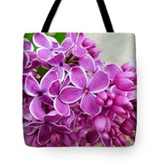 This Lilac Has Flowers With A White Edging. 4  Tote Bag
