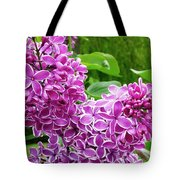 This Lilac Has Flowers With A White Edging.1 Tote Bag