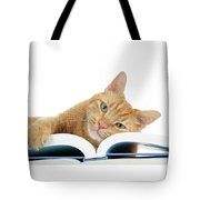 This Tabby Cat Loves Books  Tote Bag