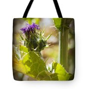 Thistle 2 Tote Bag