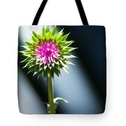 Thistle Bloom Tote Bag
