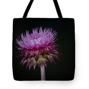 Thistle On Black Background Tote Bag