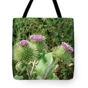 Thistle Trinity Tote Bag
