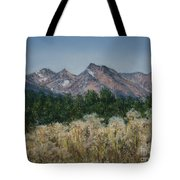 Thistledown In The Valley Tote Bag