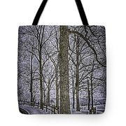 Thompson Lake Hdr  Tote Bag