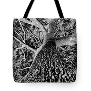 Thorn Tree Black And White Tote Bag