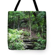 Thorncrown Chapel Setting In The Ozark Mountains Tote Bag