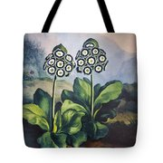 Thornton: Auriculas Tote Bag