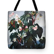 Thornton: Begonia Tote Bag