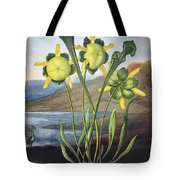 Thornton: Pitcher Plant Tote Bag