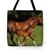 Thoroughbred Chestnut Mare & Foal Tote Bag