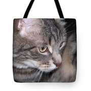 Thoughtful Holly The Cat Tote Bag