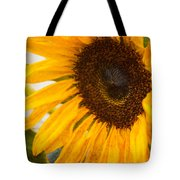Thoughts Of Autumn Tote Bag