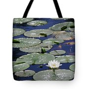Thoughts Of Summer Tote Bag