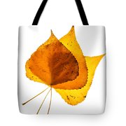 Three Backlit Cottonwood Leaves In Autumn On White Tote Bag