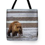 Three Bears Tote Bag