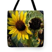 Three Beautiful Sunflower Tote Bag