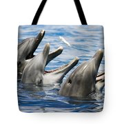 Three Bottlenose Dolphins Tote Bag