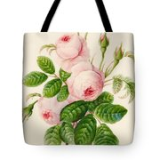 Three Centifolia Roses With Buds Tote Bag
