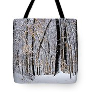 Three Creeks Conservation Area - Winter Tote Bag