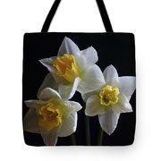 Three Daffodil Tote Bag