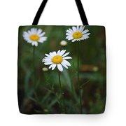 Three Daisy's Tote Bag