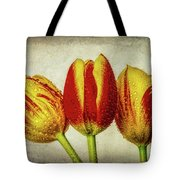 Three Dew Covered Tulips Tote Bag