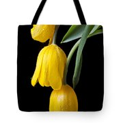 Three Drooping Tulips Tote Bag