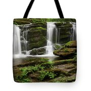 Three Falls Of Tremont Tote Bag