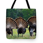 Three Fans Tote Bag by Todd Hostetter