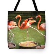 Three Flamingos Tote Bag