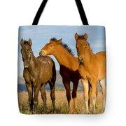 Three Foals Tote Bag
