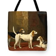 Three Fox Hounds In A Paved Kennel Yard Tote Bag