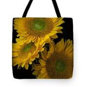 Three Golden Sunflowers Tote Bag