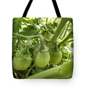 Three In A Row Green Tomatoes Tote Bag