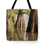 Three Kings Tote Bag by Jonas Wingfield