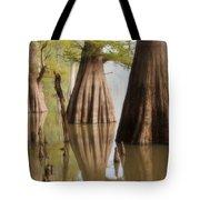 Three Kings Tote Bag by Jonas Wingfield