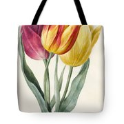Three Lily Tulips  Tote Bag