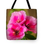 Three Little Beauties Tote Bag