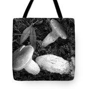 Three Mushrooms Tote Bag