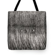 three musketeers BW Tote Bag