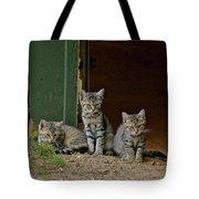 Three Musketeers  Tote Bag